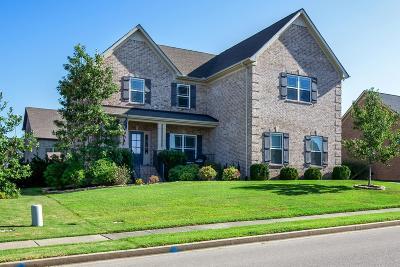 Spring Hill  Single Family Home For Sale: 4003 Gari Baldi Ct