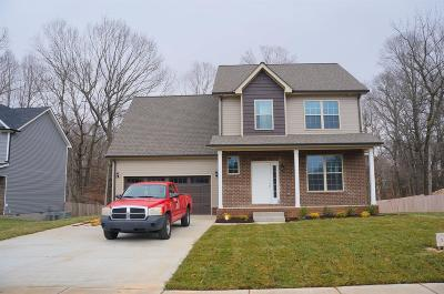 Clarksville Single Family Home For Sale: 141 Sycamore Hill Dr