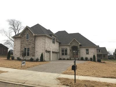 Hendersonville Single Family Home For Sale: 126 Thornwood Pl