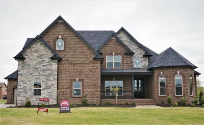 Clarksville Single Family Home For Sale: 63 Hartley Hills