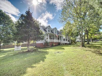 Single Family Home For Sale: 161 Merritt Dr
