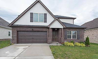 Smyrna Single Family Home Under Contract - Not Showing: 4343 Freemark Dr