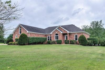 Franklin Single Family Home For Sale: 1346 Ascot Ln