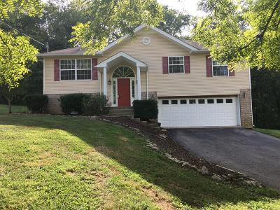 Spring Hill Single Family Home For Sale: 500 White Oak Trail