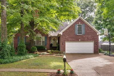Spring Hill Single Family Home For Sale: 1519 Halifax Dr