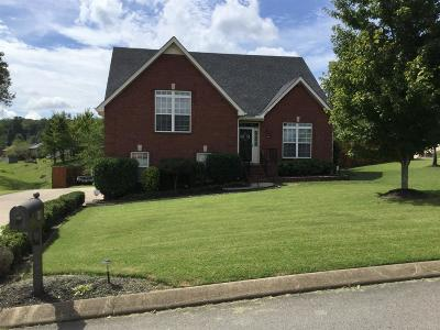 Smyrna Single Family Home For Sale: 800 Bromley Ct