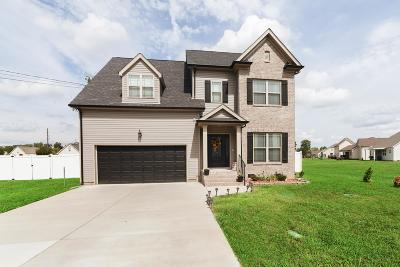 Christiana Single Family Home For Sale: 1008 Winding Branch Dr