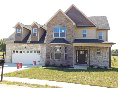 Clarksville Single Family Home For Sale: 1032 Chagford Drive