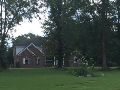 Mount Juliet Single Family Home For Sale: 3754 Rockdale Fellowship Rd