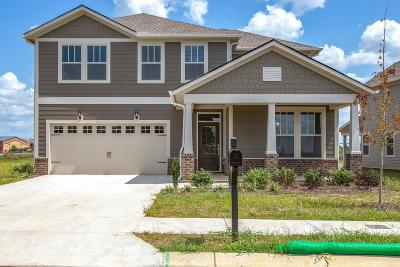 Spring Hill Single Family Home For Sale: 751 Ewell Farm Drive Lot 436