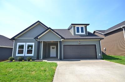 Clarksville Single Family Home For Sale: 1148 Eagles Bluff Drive