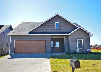 Clarksville Single Family Home For Sale: 1154 Eagles View Dr