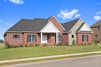 Clarksville Single Family Home For Sale: 39 Hartley Hills