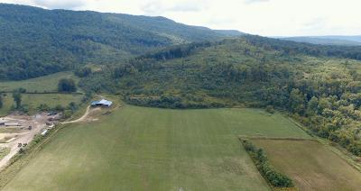 Pelham TN Residential Lots & Land For Sale: $299,900