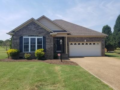 Mount Pleasant Single Family Home For Sale: 323 Brookside Dr