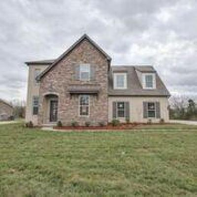 Williamson County Single Family Home For Sale: 116 Madison Mill Drive. Lot 19