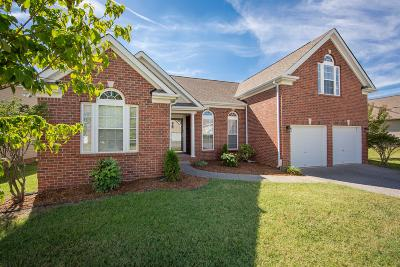 Spring Hill Single Family Home For Sale: 1023 Countess Ln