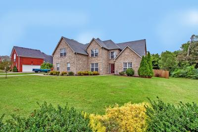 Mount Juliet Single Family Home For Sale: 102 Beagle Run