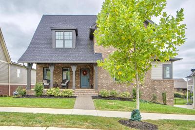 Franklin Single Family Home For Sale: 441 Finnhorse Ln