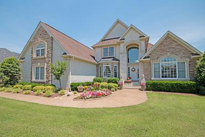 Sumner County Single Family Home For Sale: 1032 Somerset Downs Blvd