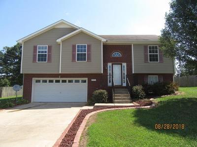 Clarksville Single Family Home For Sale: 3397 Dresden Way