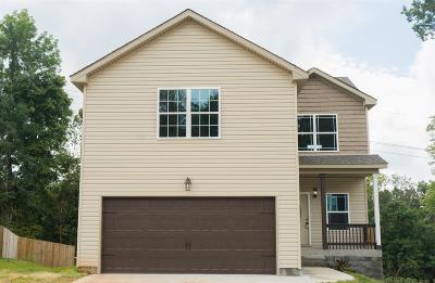 Clarksville Single Family Home For Sale: 157 Eagles Bluff