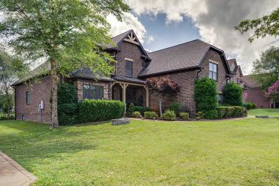 Spring Hill Single Family Home For Sale: 4035 Miles Johnson Pkwy