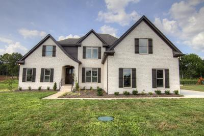 Murfreesboro Single Family Home Under Contract - Not Showing: 180 Knoxleigh Way- #109