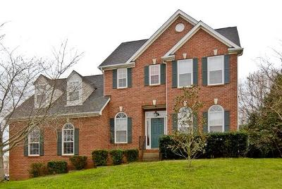 Nashville Single Family Home For Sale: 1201 Meadow Trace Ct