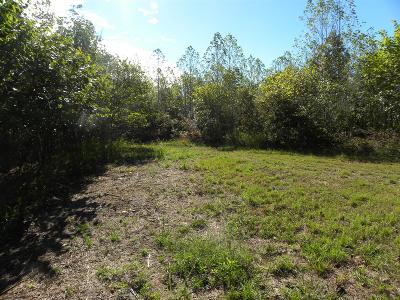 Linden Residential Lots & Land For Sale: Cotton Branch Rd
