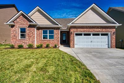 Clarksville Single Family Home For Sale: 118 Griffey Estates