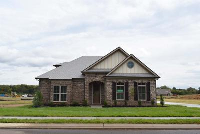 Murfreesboro Single Family Home For Sale: 3216 Rift Lane