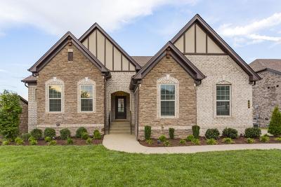 Nolensville Single Family Home For Sale: 420 Larkhill Ln