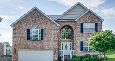 Mount Juliet Single Family Home For Sale: 4003 Timber Ridge Ct