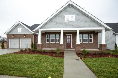 Hendersonville Single Family Home For Sale: 193 Ashington Circle