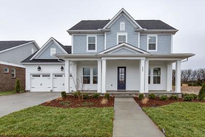 Hendersonville Single Family Home For Sale: 195 Ashington Circle