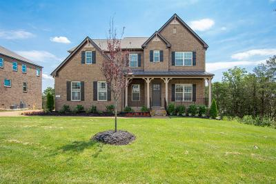 Nolensville Single Family Home Under Contract - Showing: 748 Alameda Avenue Lot #151
