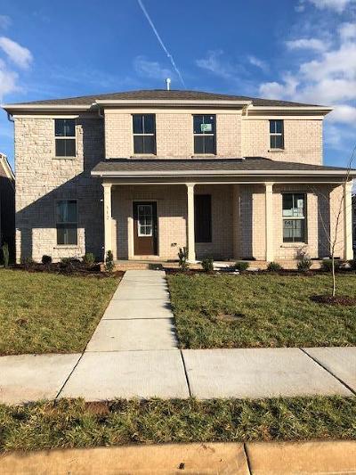 Mount Juliet Single Family Home For Sale: 312 Union Pier Drive Lot 40