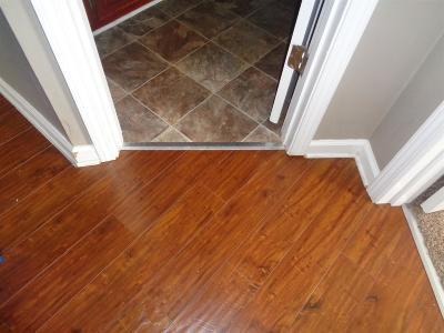 Clarksville Rental For Rent: 3831 Jockey Drive