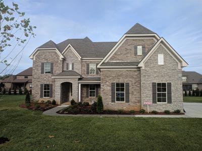 Murfreesboro Single Family Home For Sale: 2817 Battleground Drive -lot 95