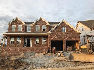 Mount Juliet Single Family Home For Sale: 5059 Winslow Drive Lot 428