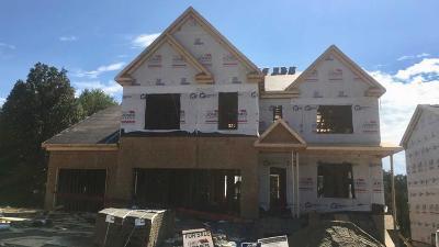 Mount Juliet Single Family Home For Sale: 5068 Winslow Drive Lot 447