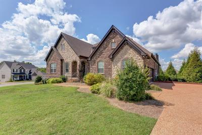 Nolensville Single Family Home For Sale: 325 Crescent Moon Cir