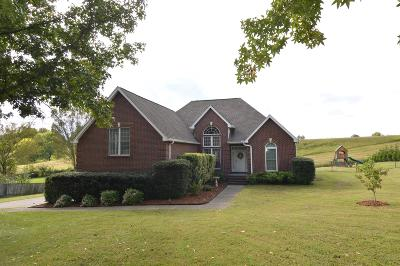 Mount Juliet Single Family Home Under Contract - Showing: 904 Gailynn Marie Dr