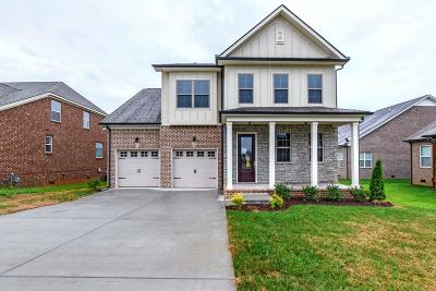 Mount Juliet Single Family Home For Sale: 12 Hope Court