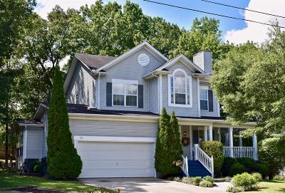 Smyrna Single Family Home For Sale: 325 Ella St
