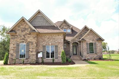Mount Juliet Single Family Home For Sale: 7105 Couchville Pike #1