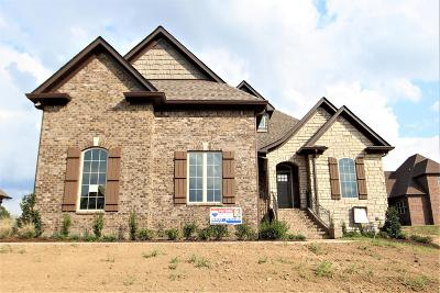 Mount Juliet Single Family Home For Sale: 437 Whitley Way #212