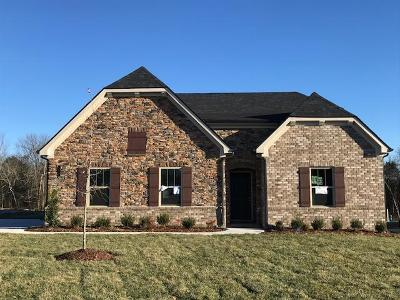 Williamson County Single Family Home For Sale: 173 Burberry Glen Blvd