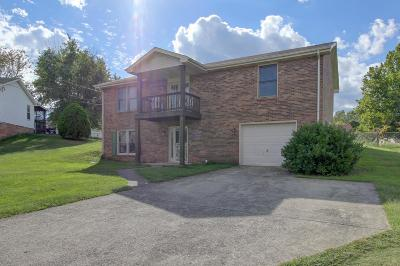 Clarksville Single Family Home For Sale: 311 Arrowood Dr.